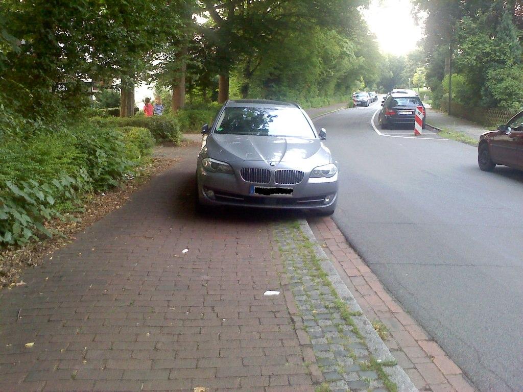 Radwegparker 5 - Mit Kindern im Hänger - viel Spaß ...